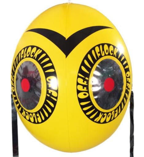 Big Balloon to Scare Birds