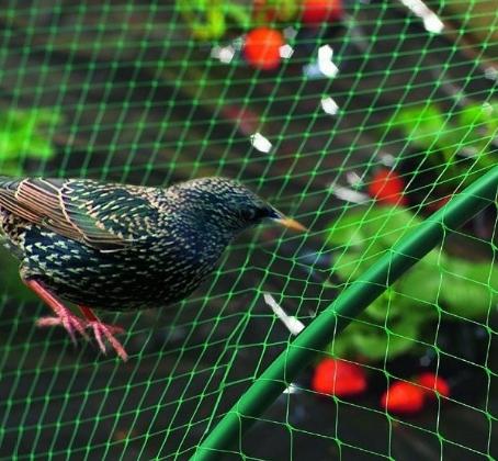 Bird Netting for Garden