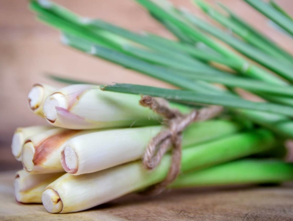 Break Off the Stalks of Lemongrass