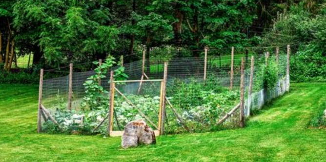 fence barriers for deer