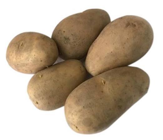 Diamant Potato