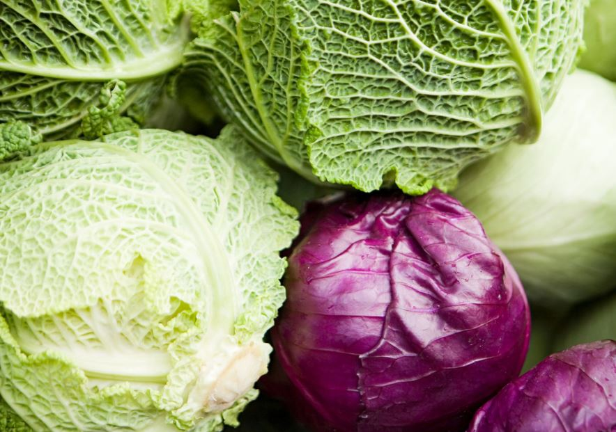 The Varieties of Cabbages